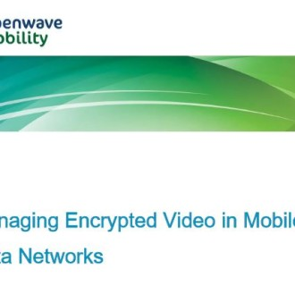 Video encryption optimisation